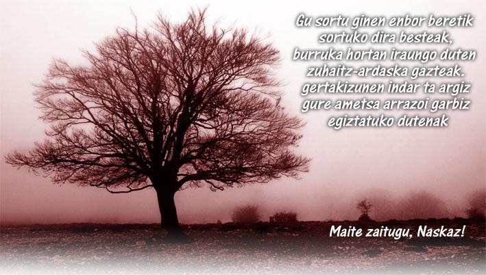 Naskazona1