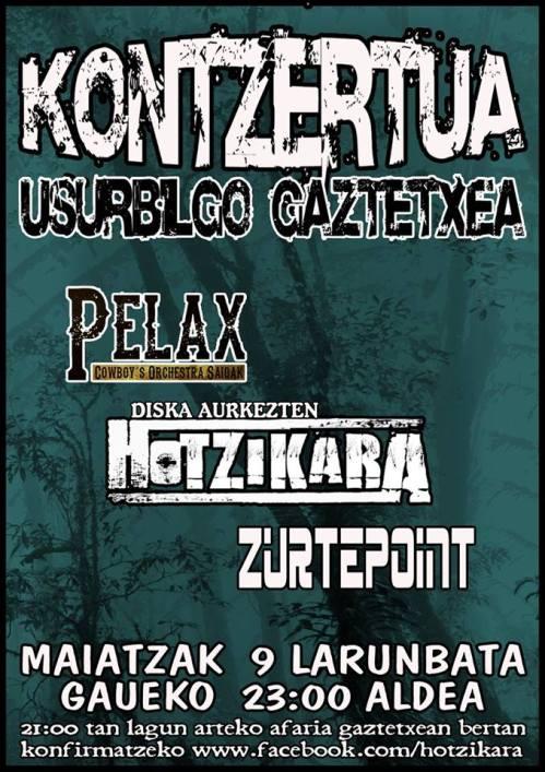 Kontzertua Gaztetxean