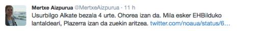 Mertxe Aizpurua twitter