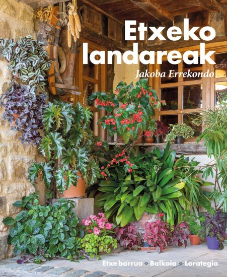 Etxeko-landareak-Jakoba Errekondo1
